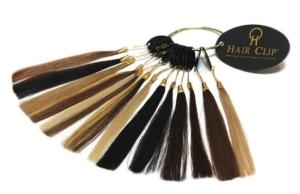 Extensions à clip - Hair Clip