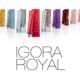 igora royal schwarzkop